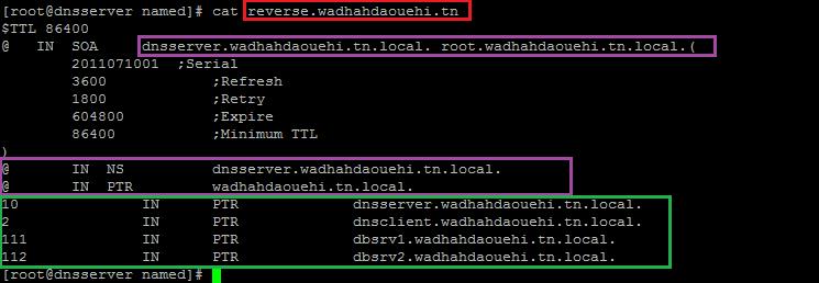 dns-reverser-not-rac-v2